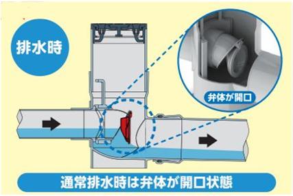 浄化槽 逆流